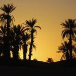 Trek spirituel désert marocain