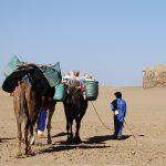 trek-désert-maroc-sur-mesure