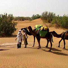 Family Trek in Morocco to explore Sahara desert - 3 days