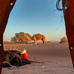 4 days Hiking Sahara Desert Tour