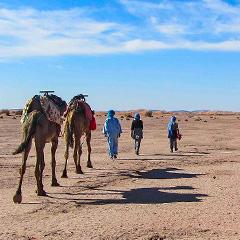 Desert Trek to Erg Chigaga Dunes (Chegaga)
