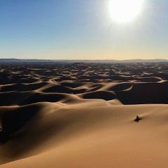 Desert tour from Marrakech with 5 days camel trekking in the Sahara desert
